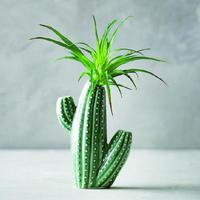 【Creative Co-Op Home】サボテン フラワーベース,Stoneware Cactus Vase Green