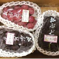 おまかせ温室ぶどう2kg(3~4房入り)