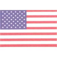 国旗フェイスシール アメリカ合衆国 30mm×45mm 厚手