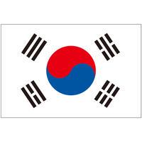 インクジェット国旗シール 大韓民国 Lサイズ 約66mm×99mm