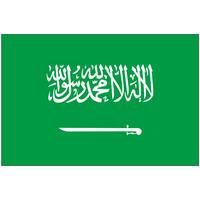 インクジェット国旗シール サウジアラビア Mサイズ 約35mm×52mm