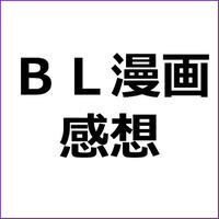 「SEX PISTOLS・感想」漫画アフィリエイト向け記事テンプレ!