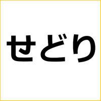 「せどり商品の仕入れ法」記事テンプレート!