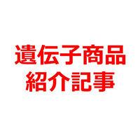 遺伝子調査「遺伝子博士」商品紹介記事テンプレート!(約300文字)