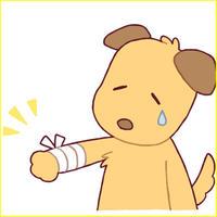 「ペットの保険」アフィリエイト記事テンプレート(ペラサイト・ブログ兼用/5700文字)
