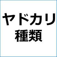 「レッドレッグハーミット」紹介記事テンプレート!