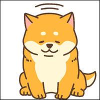 ペットアフィリエイト「犬の飼い方」記事テンプレート(2700文字)