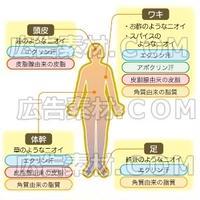 女性の体臭メカニズム_イラスト図解