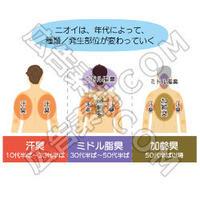 【プロ仕様】男性の体臭解消アフィリエイトブログを作る記事セット!(イラスト図解8枚つき/約29000文字)
