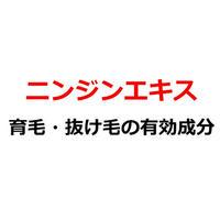 育毛商品の有効成分「ニンジンエキスの効果とは?」記事テンプレート(1300文字)