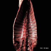 エゾシカ(蝦夷鹿) サドル骨つき一頭分(1kgあたり)【送料着払い】