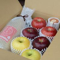 まるごとりんごセット~信州りんご3兄弟~3キロ