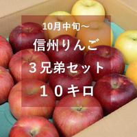 信州りんご3兄弟セット10キロ