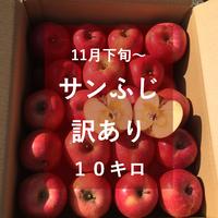 サンふじ(訳あり)10キロ