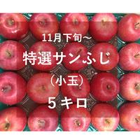 特選サンふじ(小玉)5キロ