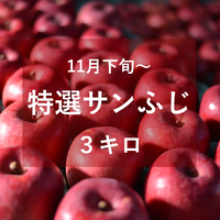 特選サンふじ(中・大玉)3キロ