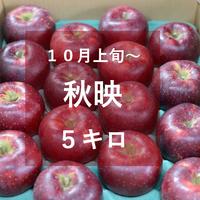 秋映5キロ