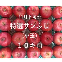特選サンふじ(小玉)10キロ
