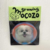 モコゾウレンチキュラーバッジ「growing mocozo」