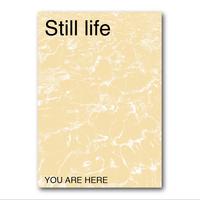 YAH 007 Still life