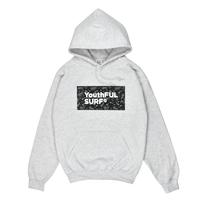 Bandana Box Logo  Hooded Sweatshirt / Ash