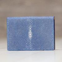 ブルー《カードケース:パーン》