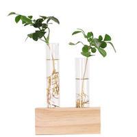 花瓶ガラス プランターテラリウム テーブルデスクトップ フラワーポット_2つType