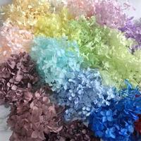 アジサイの花 ドライフラワー ハーバリウムやフラワーリースに最適な上質なドライフラワー_no.12~no.21