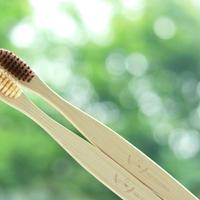 竹製歯ブラシストック20本セット (ブラウン×10,ベージュ×10)