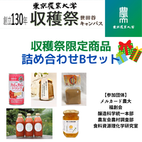 【期間限定商品】収穫祭詰め合わせBセット