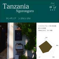 タンザニア    ンゴロンゴロ 100g