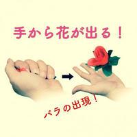 手からぱっと花が出る『アピアリング・ローズ』【G0229】Appearing Rose
