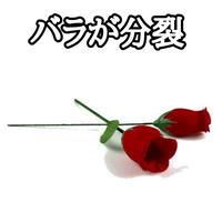 ワントゥツーローズ【G1358】One To Two Roses