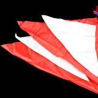20世紀シルク(紅白版)<最もオーソドックスな20世紀シルク>【G0196】20th Century Silks