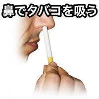 シガレットアップザノーズ【G0825】Cigarette Up The Nose