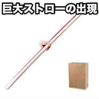 ビッグアピアリングストロー【G1104】Bag Appearing Big Straw