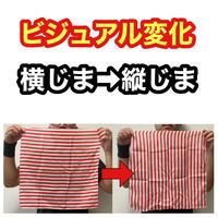 縦じま横じまチェンジングシルク【G1055】Rapid Change Silk