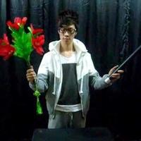 トーチトゥフラワー【G1305】Torch To Flower