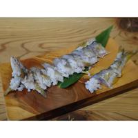 美濃国の天然鮎なれずし(乳酸発酵)/ 2尾