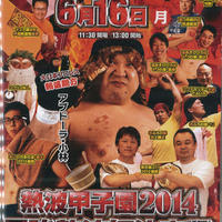 【DVD】熱波甲子園2014 最強熱波師決定戦!
