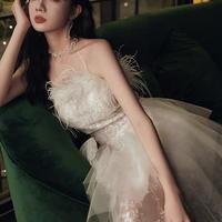チューブトップ羽毛装飾シースルーロングドレス