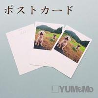 YUMEMO便【1セット8枚】