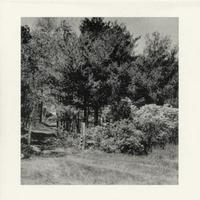 guitar solo #1 / AOKI,hayato [ Music CD ]