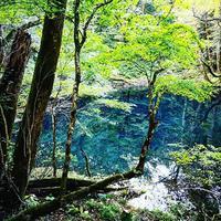 【4月はオンライン】4月25日開校 東京『クンルンネイゴンスクール』