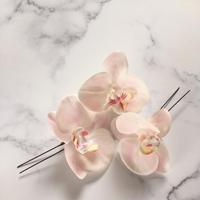胡蝶蘭 ヘアピン  pink