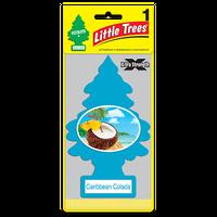 ビッグリトルツリー カリビアンコラーダ