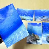 海遊(うみあしび)オリジナルポストカード5枚セット