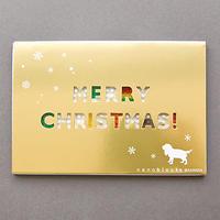 【NP024】nanoblock®クリスマスカードGift 〜キャバリア〜