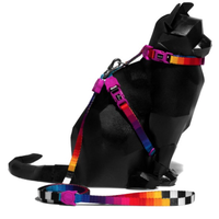 702397 zee.cat PRISMA HARNESS SET プリズマ リード・ハーネスセット