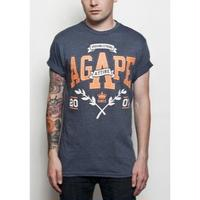 AGAPE ATTIRE / PROVING STRONG TEE